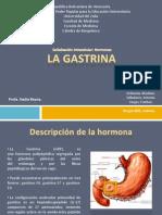 La Gastrina