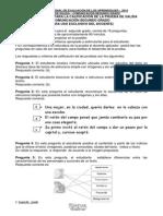 PRUEBA_SALIDA_COMUNIC_2°_SIREVA_2014_OK