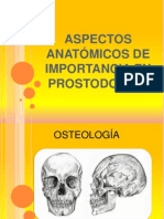 Aspectos Anatómicos de Importancia en Prostodoncia