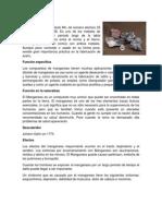 ELEMENTOS TABLA PERIODICA.docx