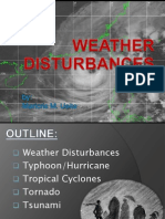 WEATHER DISTURBANCE.ppt