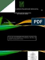 Reanimación Cardio-pulmonar Neonatal Concideraciones Especiales