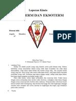 Laporan Praktikum Endoterm Eksoterm