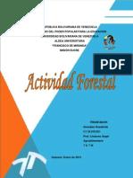 Actividad Forestal