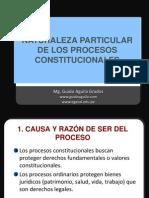NATURALEZA DE LOS PROCESOS CONSTITUCIONALES.pptx