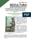 EL INIFOR PREPARA EL CULTIVO DE Pleurotus eryngii, PARA PRODUCCIÓN A NIVEL RURAL EN VERACRUZ COMO PARTE DEL ACUERDO DE COOPERACIÓN TÉCNICA Y CIENTÍFICA ENTRE JAPÓN Y MÉXICO (JICA-UV)