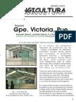 Proyecto Guadalupe Victoria, Puebla