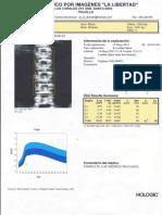DMO_0001 - copia.pdf