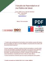 2012-11-9 Ppt Estudio Paternidad Olmué