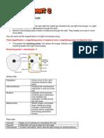 Biology Edexcel Notes - B2