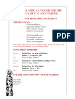 Novena for the Security of Pope Francis Day 7