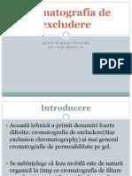 Cromatografia de Excludere