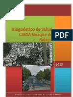 Trabajo Final Del Diagnostico de Practicas Profesionales de Salud -Original- 1