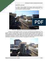 Capitolul 3 Modificat 08-12-2014 p2