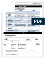 Neurology Consult Note Template Anatomical Terms Of