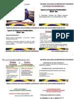 direitos hmanos - mestre dos concursos.pdf