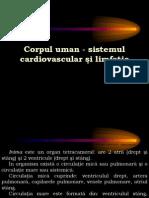 aparatulcirculator