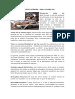 COMO PROTEGERSE DE LOS RAYOS DEL SOL.docx