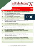 criterion a 14-15 brochure rubric