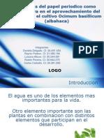 Ventajas Del Papel Periodico como alternativa  en el aprovechamiento del agua para el cultivo Ocimum basillicum (albahaca)