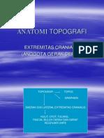 anatomi-topografi