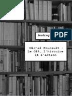 Foucault Et Le Gip