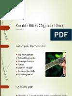 Snake Bite (Gigitan Ular) Kelompok 4