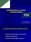 Clase 03 Adaptación de La Vida Extrauterina