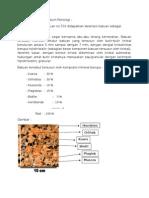 Contoh Laporan Praktikum Petrologi