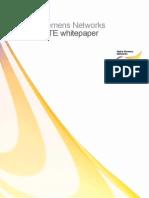 20110319 NSN TD-LTE WhitePaper MForum
