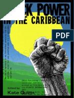 Caribe Poder Negro