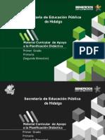 SUGERENCIAS DIDACTICAS 1.pdf