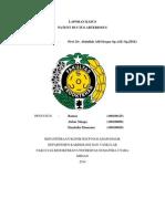 Laporan Kasus Patent Ductus Arteriosus