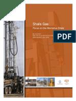 OGAP Marcellus Shale Gas Report-6!12!08