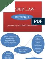 Ryn Present Cyber Law