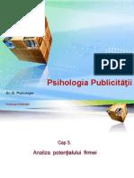 A 03 PUB Analiza Potentialului Firmei 2013