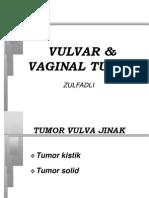 Vulvar and Vaginal Tumor