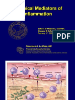 ## Chemical Mediators in Inflammation