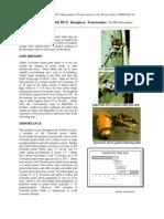 stinkbugs.pdf