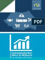 Evolutia IMM-urilor in Romania