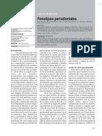 Fenotipo Periodontal