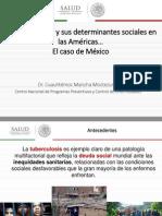 2014 Cha Tb Determinantes Mexico