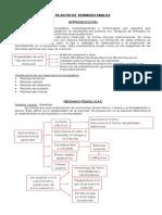 Plásticos Termoestables (resumen)