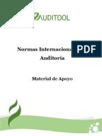Guia+Normas+Internacionales+de+AuditoriaFinanciera