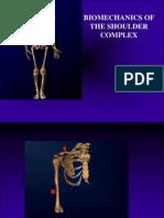 Biomechanics of the Shoulder Complex