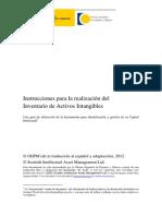 InstruccionesRealizacionInventatykytrioActivosIntangibles Version FFagosto 2012