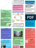 Culturally Relevant Math Pedagogies Brochure