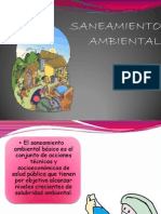 Saneamiento Ambiental Nelly