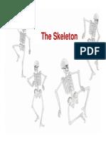 Skeleton Introduction Upper Torso, Lower Torso