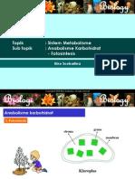 Metabolisme-Fotosintesis.ppt